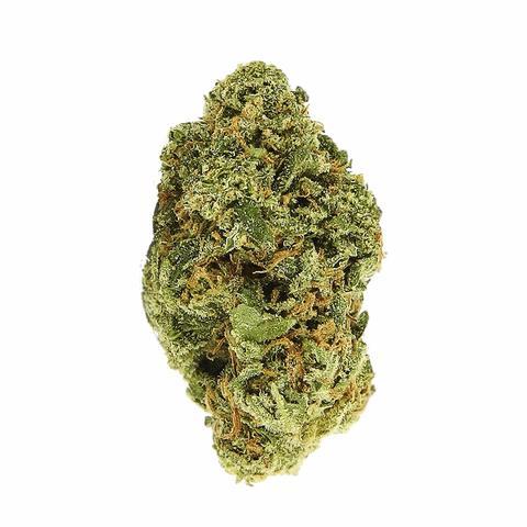 Buy The Complete Marijuana Seed & Grow Set (Medical) Online