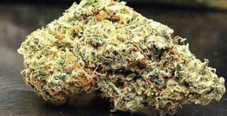 buy cannabis in uk